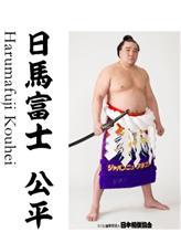 日馬富士  引退