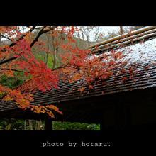 近所の気になっていたCafeへ ~仙仁温泉岩の湯・櫓~