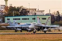 『赤い悪魔』と『蝙蝠』F/A-18C, WT11 & DT11