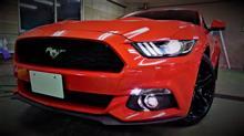 【納車!】フォード マスタング(50 years edition)