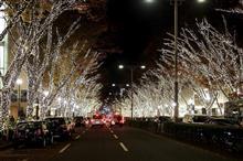 イルミネーション巡り第三弾~新宿・渋谷・表参道~