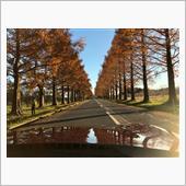 琵琶湖周辺ドライブ