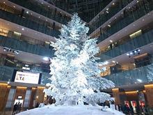 東京駅KITTEのツリー(点灯時)
