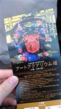 金魚品評会
