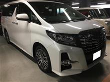 新型アル・ヴェル メーカーオプション詳細!