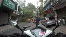 倒れる街路樹