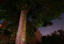 今年も流行ってるクリスマスライトプロジェクター