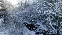 寒い!雪景色。