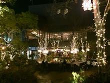 渋谷青の洞窟やら表参道おもはらの森やら