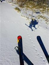 行ってきたよ~ ●滑り その8 今日の裏山スキー場はこんな感じ。