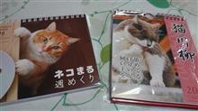 遅くなったけど猫カレンダーが届いた💕