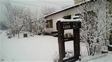 今日はLEEK雪国です❗(^-^)v