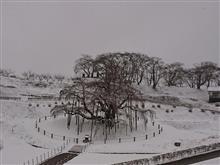 正月に吹雪
