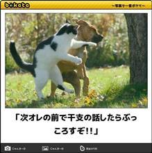 2018年!実家帰省とちょっとお会いしません会?By 埼玉