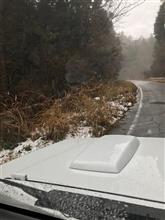 今年最初の雪の