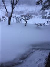 70センチ積雪