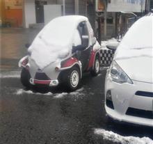 がいな雪!