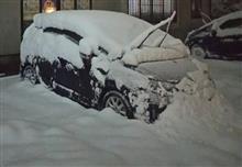 雪がスゲー(*_*)