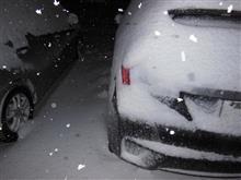 絶賛吹雪中