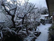 久しぶりの積雪&大渋滞。