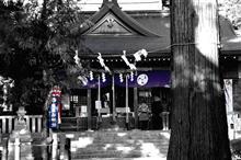 数年振り 鉄馬で神社