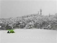 雪山ナウ!