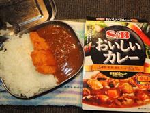 室内火力演習(/^^v)メスティン炊飯でS&Bおいしいカレー(ハムカツON)