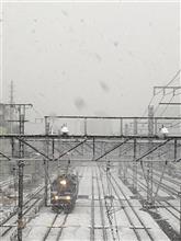 東京の降雪