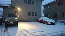 雪がやってきました(^_-)-☆