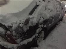 東京は雪です