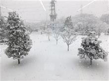 1/27第6回TNUAC走行会in日光サーキットのタイスケ