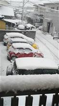 雪がやばいね