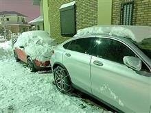 大雪!30センチぐらい積もりました