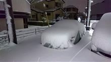 まさかの大雪警報😓