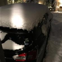 昨夜はすごい大雪でした!レヴォーグに積もってます