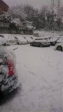 雪がすごかったです