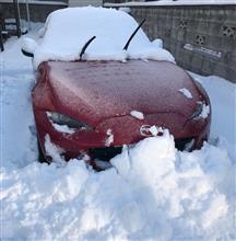 除雪洗車!
