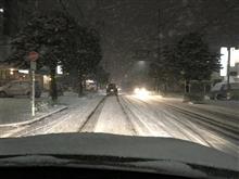 名古屋も雪に覆われてきました