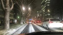 名古屋も雪っ