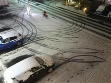名古屋にも雪が降りました~♪