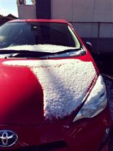 愛知にも!雪が!