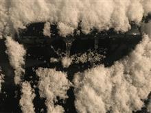 つららと、雪と、時々、あうりす。