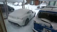 雪が続いて