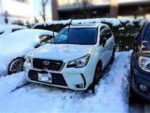 東京豪雪!