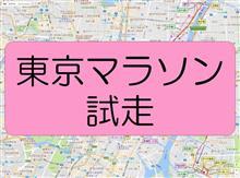 東京マラソン試走(新コース部分)