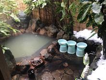 雪の中の温泉♨を目指して
