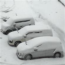 ◆雪国の冬の朝は早い。。。山形に来ています