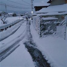 またもや南岸低気圧で大雪!