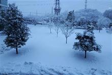 今朝は雪景色、八王子はなぜ雪が積もる(。>д<)