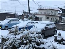 今年2回目の積雪